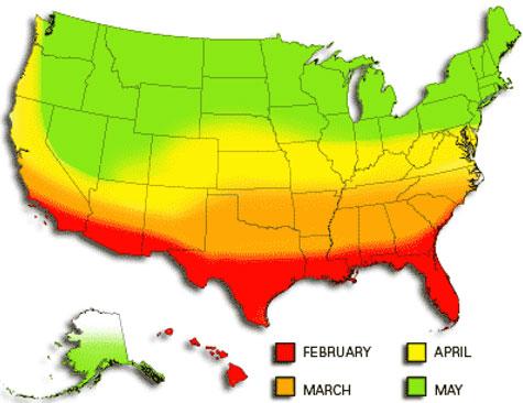 Mosquito season in the U.S.